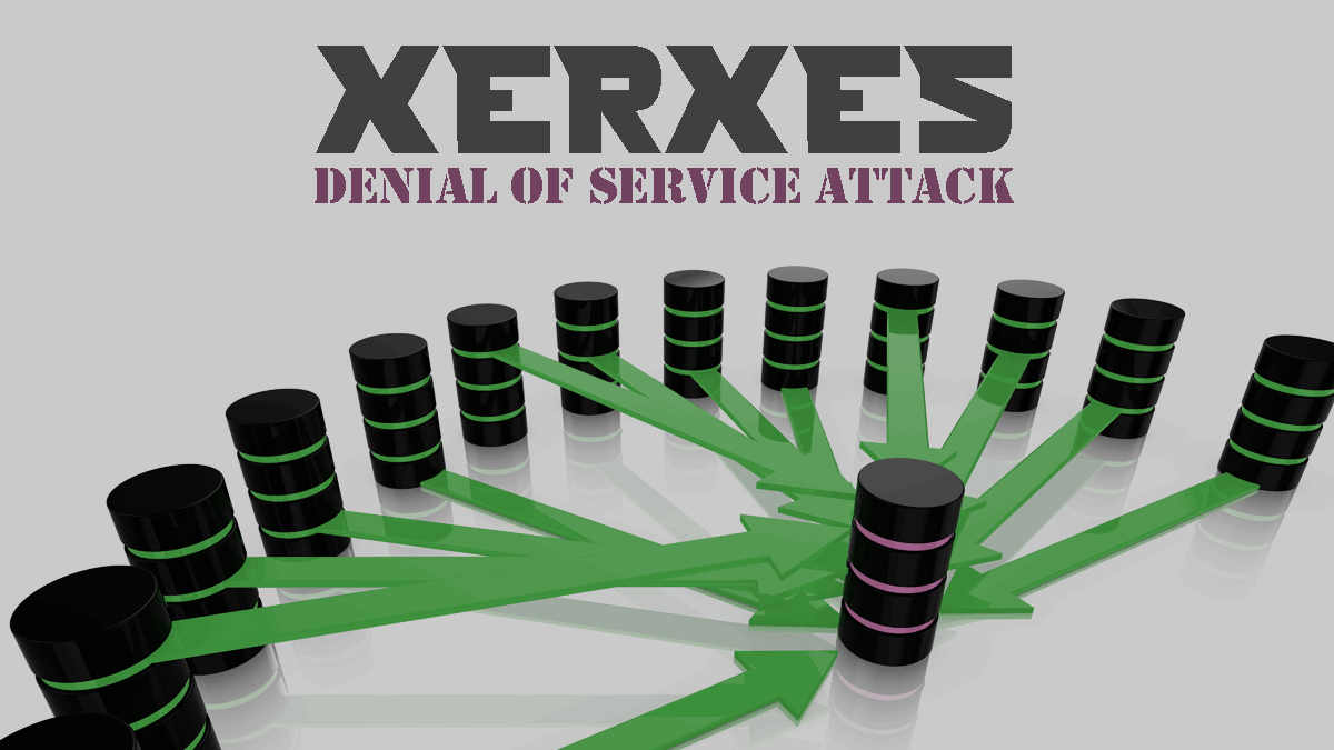 XERXES - Best Tool of year for DoS Attack | Hackeroyale